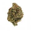 Grease Monkey Cannabis Strain