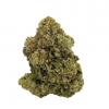 Violator cannabis strain