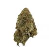 Comatose Cannabis strain