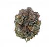 Ice Cannabis Strain